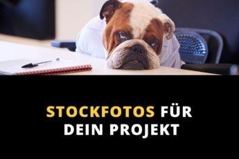 Fotos kaufen - Stockfotos für dein Projekt